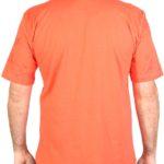 Camiseta Foliage Rikwil (6)